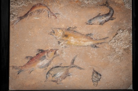 Roman Pompeian Wall Fresco with Aquarium-like Swimming Fish