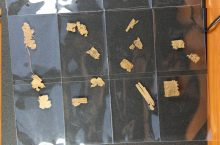 Pieces of Egyptian Papyrus